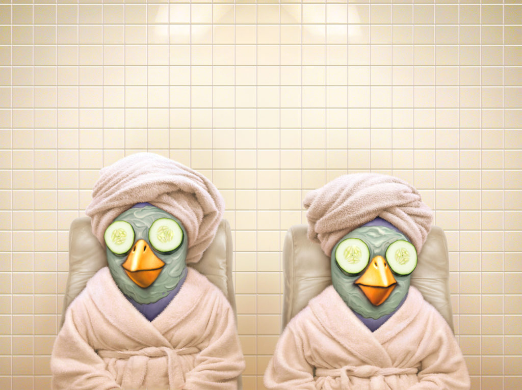 Illustration of birds at a Day Spa